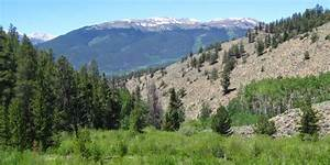 Colorado Nature Hike - Low Pass Gulch In Chaffee County