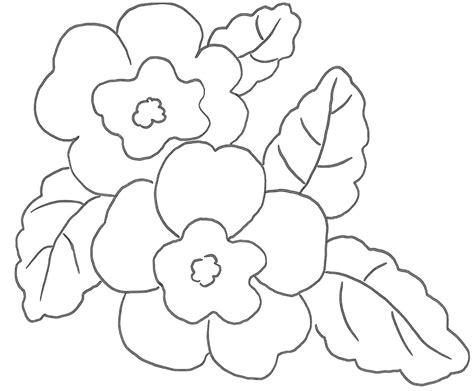 disegni di fiori cerchi disegni di fiori ecco qui primule bucaneve viole