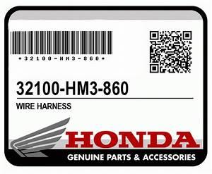 Ask The Editors  Honda 300ex Wiring Harness Compatibility