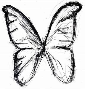 Butterfly Drawings In Pencil - ClipArt Best