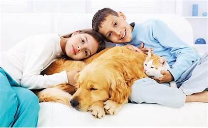 Death Pets Pet Dogs Talking Care Parent