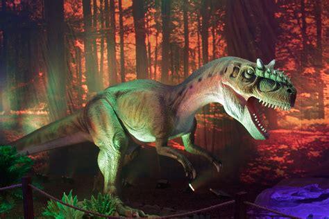 dinosaur backgrounds   pixelstalknet