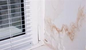 Feuchtigkeit Am Fenster : schimmel am fenster dauerhaft entfernen ~ Watch28wear.com Haus und Dekorationen