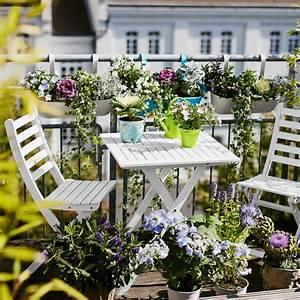 Blumen Für Den Balkon : blumen f r den sonnigen balkon ~ Lizthompson.info Haus und Dekorationen