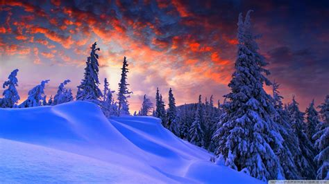 69+ 1080p Winter Wallpapers On Wallpaperplay