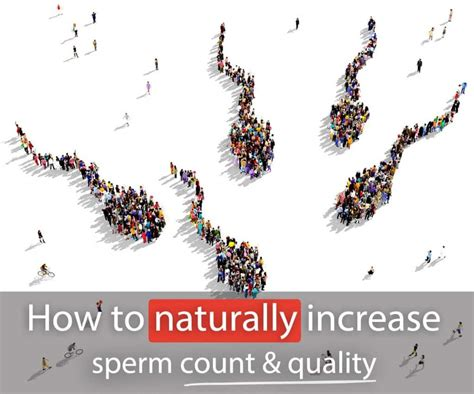 How To Naturally Increase Sperm Count And Quality