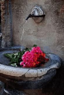bouquet gifs tenor