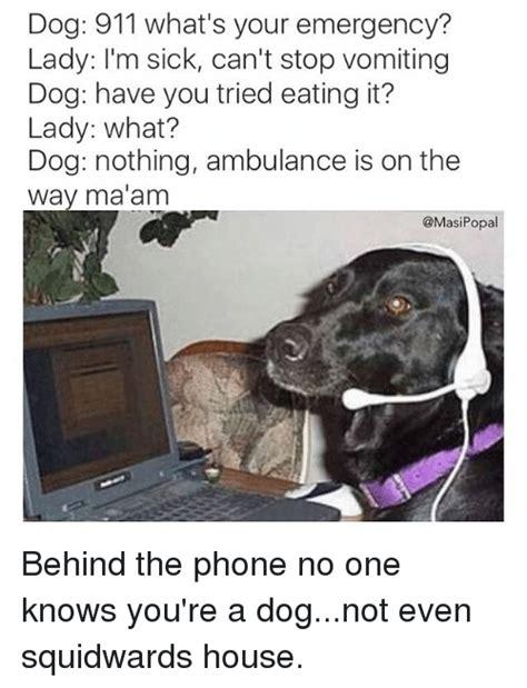 Dog On Phone Meme - 25 best memes about squidward house squidward house memes