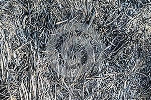 Seamless Burn Ash Texture Stock Photography - Image: 35784492
