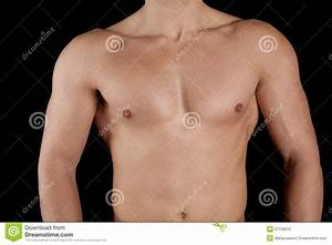 Chest Stock Photo  Image Of Male  Shirtless  Flex  Muscle