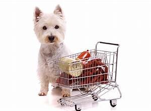 Kalorienbedarf Hund Berechnen : hundefutter optimalen bedarf und kosten berechnen ~ Themetempest.com Abrechnung