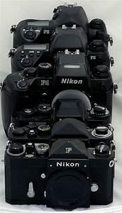 Nikon D3100 Guide For Beginners Pdf