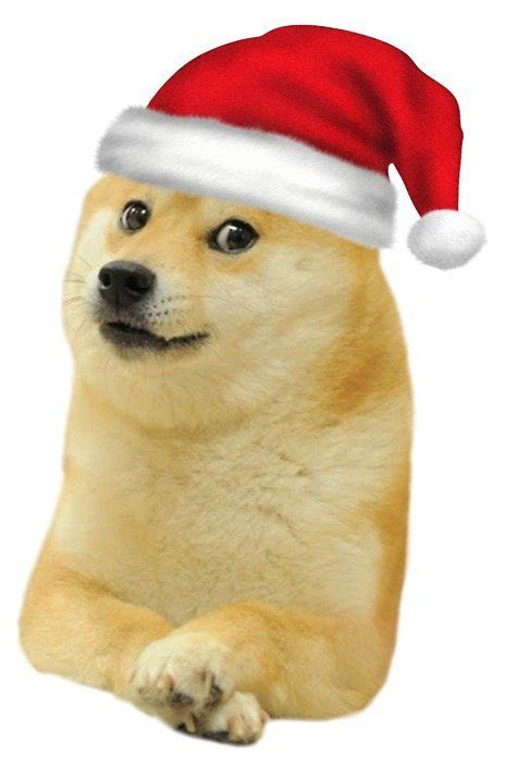 Doge Meme Christmas - quot christmas doge quot by ohsnap redbubble