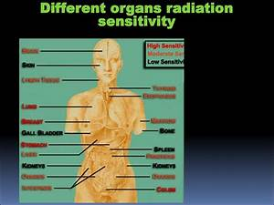 Periodic Table Parts Ionizing Radiation In Medicine презентация онлайн