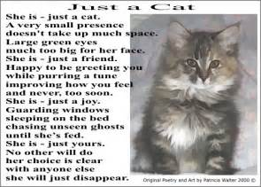 cat poem cat loss quotes and poetry quotesgram