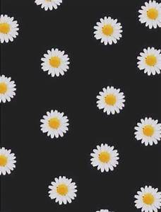 daisy flowers background | Tumblr