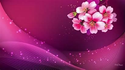 Pink Background Purple Pretty Colour Pc Widescreen
