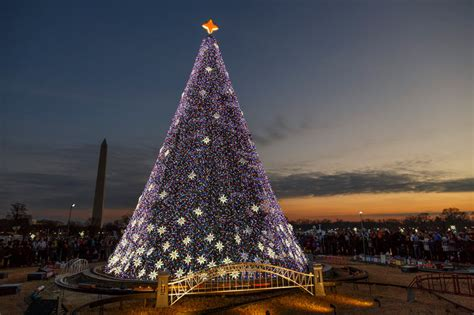 visiting national christmas tree at night the best light displays events in washington dc
