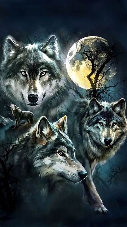 Wolf Iphone Wolves Wallpapers Cool Lobo 3d