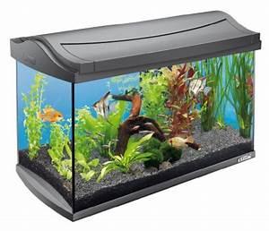 Komplett Aquarium Kaufen : tetra aquaart fische aquarium komplett set 60 liter mini ~ Eleganceandgraceweddings.com Haus und Dekorationen