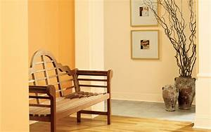 Home interior paint colors interior car led lights for Traditional interior paint color ideas