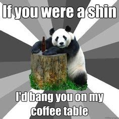 Sex Panda Meme - 1000 images about pick up lines on pinterest pick up line nerdy pick up lines and pickup lines
