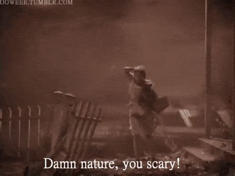 Damn Nature You Scary Meme - damn nature you scary is an online expression typically associated with videos depicting the