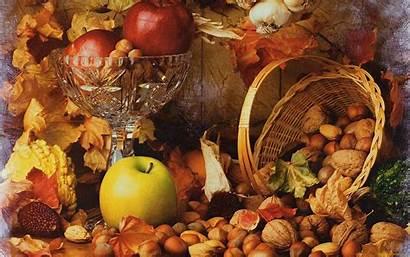 Windows Autumn Harvest Fall Thanksgiving Wallpapers Theme