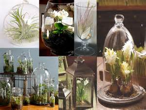 designer terrarium wednesdays with terrarium centerpieces event designer harvey designs ga