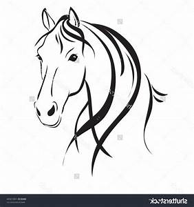 Simple Horse Head Drawing - Drawings Nocturnal