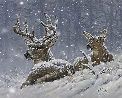 Winter Animation Animals Dreamies Gifs Weihnachten Deer