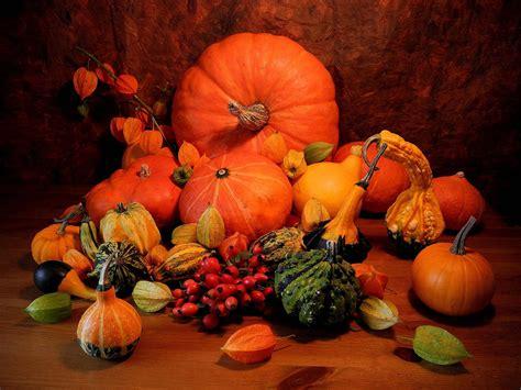 Autumn Pumpkin Wallpaper by Pumpkin Wallpapers Free Wallpaper Cave