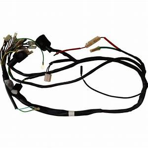 Wire Harness Cd70 Old