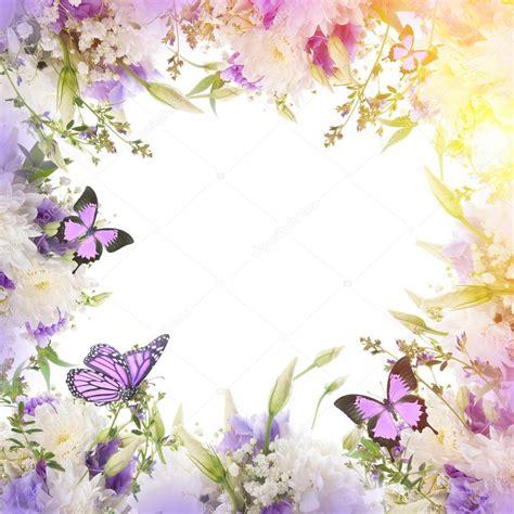 cornici fiori cornice con fiori e farfalle foto stock 169 seqoya 102588554