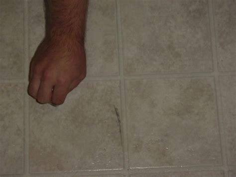 removing scuffs from vinyl floors thriftyfun