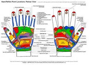 Reflexology Hand Chart