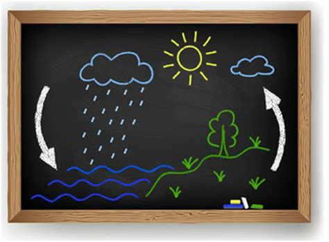 vector schematic representation   water cycle