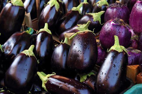 comment cuisiner des aubergines cinq façons de cuisiner l aubergine cmg