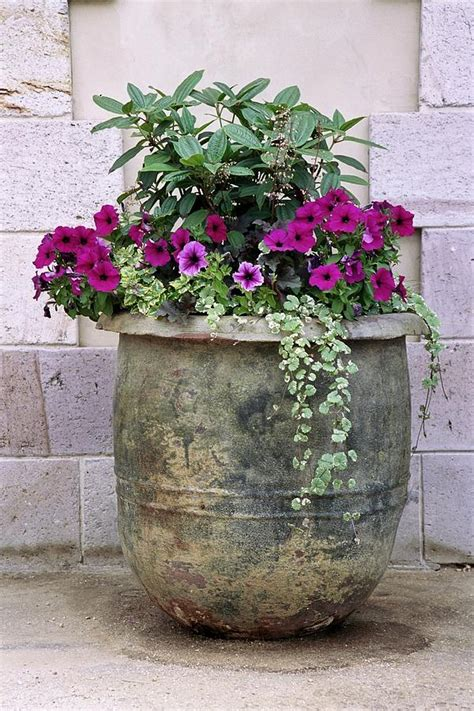 big flower pot arrangements patio pot tattoo pictures to pin on pinterest page 2