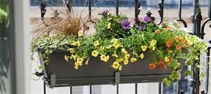 Jardiniere Pas Chere : jardiniere pas ch re ~ Melissatoandfro.com Idées de Décoration