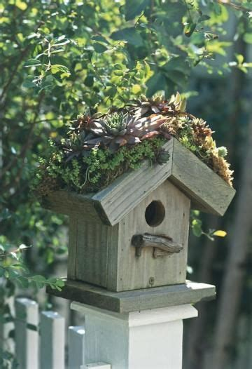 nesting house  wood  construct