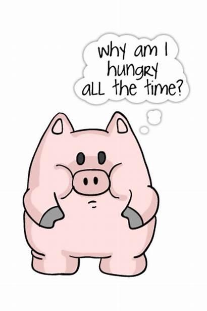 Pig Funny Hungry Pigs Piggy Quotes Screensaver