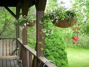 Schaukel Für Balkon : h ngepflanzen f r balkon welche pflanzen sind auf den ~ Lizthompson.info Haus und Dekorationen