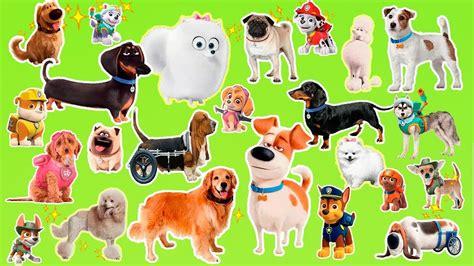 Learn The Cartoon Dogs Breeds