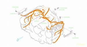 2010 Subaru Outback Engine Wiring Harness  Wiring Harness