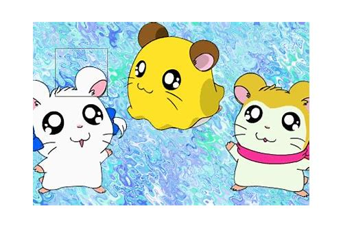 free download video hamtaro