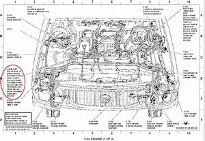 04 ford sport trac engine diagrams o wiring diagram for free With box diagram likewise mercruiser engine wiring diagram in addition 1990