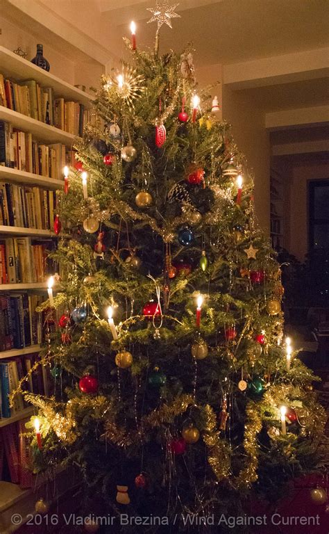 christmas tree candles wind  current