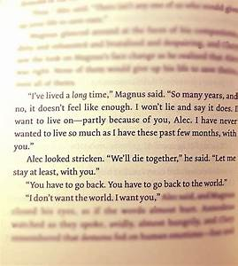 Magnus Bane and Alec Lightwood, City of Heavenly Fire ...
