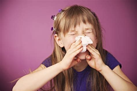 Reducing Exposure To Environmental Allergens
